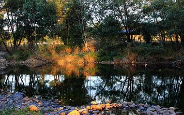 Gentle Annie Caravan Park